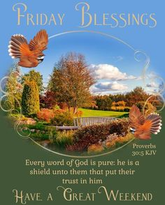 Every word of God is pure Weekend Images, Friday Images, Monday Blessings, Morning Blessings, Proverbs Kjv, Blessing Message, Good Morning Friends Quotes, Bible Verses For Women, Blessed Quotes