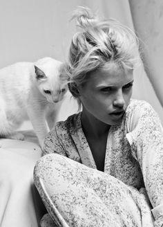 model + cat