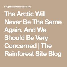 The Arctic Will Never Be The Same Again, And We Should Be Very Concerned | The Rainforest Site Blog