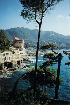 Santa Margherita, Italy . . where my family is from. .