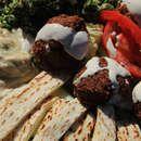 Haji-Baba in Tempe. Great middle eastern food & market