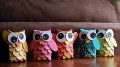bricolage pour enfants - des hiboux mignons en rouleaux de papier décorés de plumes en carton multicolore