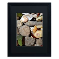 'PetoskeyStones ll' by Michelle Calkins Framed Photographic Print