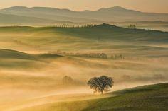 Morning... by Pawel Kucharski