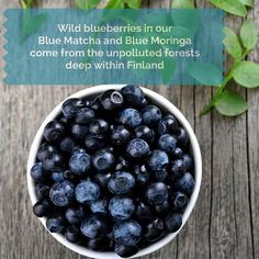 We bring to you pure, natural superfoods full of antioxidants that truly works so you can discover the many benefits of Matcha, Moringa and Wildberries. Matcha Benefits, Organic Superfoods, Wild Blueberries, Blueberry, Blue Green, Pure Products, Fruit, Pictures, Image