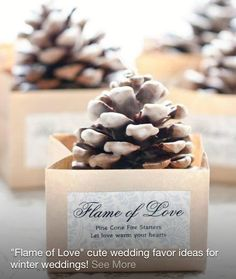 Pinecone gifts