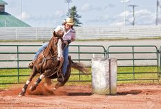 18736958-Western-horse-and-rider-competing-in-pole-bending-and-barrel-racing-competition--Stock-Photo.jpg (1300×884)