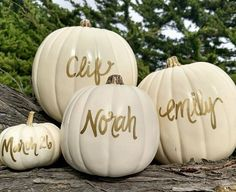 Pin for Later: 12 Spirited Halloween Pregnancy Announcements Ideas For Revealing Your Little Pumpkin Hunting Pregnancy Announcement, 2nd Pregnancy Announcements, Thanksgiving Baby Announcement, Thanksgiving Pregnancy Announcement, Fall Pregnancy Announcement, Halloween Pregnancy Announcement, Beautiful Pregnancy, Pregnant Halloween, Baby In Pumpkin