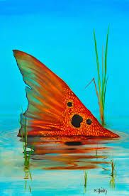 9 Best Red Fish Texas Catch Images Saltwater Fishing Sea Angling