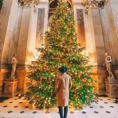 Things are certainly getting festive here in Castle Howard! Inhellip
