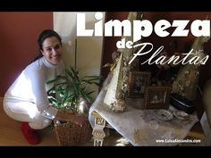Luisa Alexandra: Limpeza de Plantas • VÍDEO