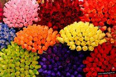 Color en... Sagunto; Valencia.