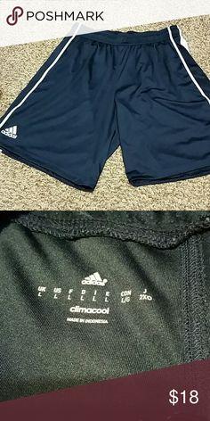 Adidas shorts Tried on, never worn Adidas Shorts