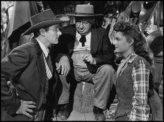 montana/errol flynn | Art, Movies, Wood and whatnot . . .: Happy Birthday Errol Flynn!
