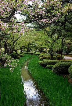 Jardin japonés.