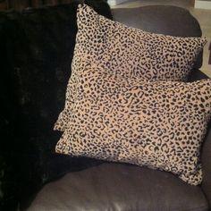 Cheetah Cheetah