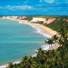 A #PraiadaPitinga localiza-se no distrito de #ArraialDAjuda em #PortoSeguro na #Bahia. Cenário de #falésias cobertas pela vegetação, águas calmas de azul intenso e excelente estrutura de #barraca, dão identidade única a este #PARAÍSO!! #praia #praias #picoftheday #photooftheday #nordeste #nordestepraiano #beach #best #férias #ferias #família #sky #sun #love #mar #paradise #natureza #beautiful #praiabaiana #coqueiro #vacation #awesome