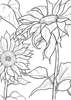 Embroidery Patterns A Guide To Buying Adult Coloring Books Sunflower Coloring Pages, Sunflower Drawing, Sunflower Art, Coloring Book Pages, Coloring Sheets, Mandala Coloring, Fabric Painting, Painting & Drawing, Line Art