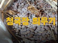 청국장 띄우기 [fermented bean paste]-산도깨비의 열두달 발효일기 - YouTube Food And Drink, Wood, Crafts, Manualidades, Woodwind Instrument, Timber Wood, Wood Planks, Trees, Handmade Crafts