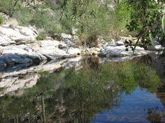 Sabino Canyon pond, Tucson, Arizona