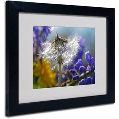 Trademark Fine Art Wet Weed Beauty Canvas Art by Steve Wall, Black Frame, Size: 16 x 20, Multicolor