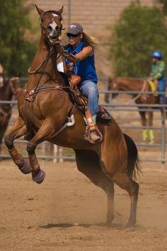 by Schooner Darrow on and rider. by Schooner Darrow on Cowgirl And Horse, Horse Love, Horse Riding, Cow Girl, Horse Girl, Barrel Racing Horses, Barrel Horse, Pretty Horses, Beautiful Horses