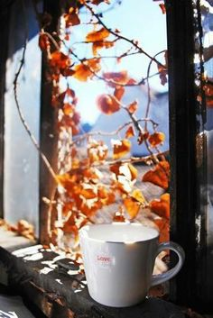 Love to drink Coffee on cool fall morning!