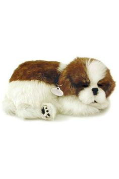 Life-like Puppies and Kittens that actually breathe. Hand covered synthetic fur pet comes with adoption certificate, collar set, bed and hair brush. Our adorable Shih Tzu breathes continuously for three to four months on the same single D battery that is included.    Measures approximately 10 x 7.5 x 3.5 inches   Perfect Petzzz Shihtzu by Perfect Petzzz. Home & Gifts - Gifts - Gifts by Occasion - Baby & Kids Alabama