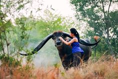 Young farmer with water buffalo Thai. by ADiREK M on 500px