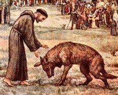 """Outra lenda do Fioretti nos fala q na cidade de Gubbio, onde Francisco viveu durante algum tempo, havia um lobo """"terrível e feroz, q devorava homens e animais"""". Fco teve compaixão pela população local e foi p/ as colinas achar o lobo. Logo, o medo do animal fez todos os seus companheiros fugirem, mas Fco continuou e, qdo achou o lobo, fez o sinal da cruz e ordenou ao animal p/ vir até ele e não ferir ninguém. Milagrosamente, o lobo fechou suas mandíbulas e se colocou aos pés de Fco"""