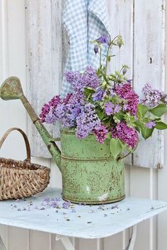 Purple Flowers in a green rusty watering can