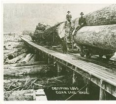 Dumping logs Clear Lake Wash. :: Clear Lake Heritage