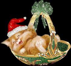 Christmas Scenes, Christmas Cats, Christmas And New Year, Merry Christmas, Christmas Ornaments, Gif Noel, Cat Art, Gingerbread, Panda