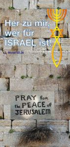 Dugit Download - Dugit Peace, Sobriety, World