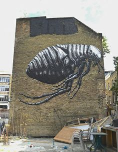 Artist: Roa #streetart