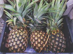 Amelia Whelan's Pineapple Paradise Smoothie