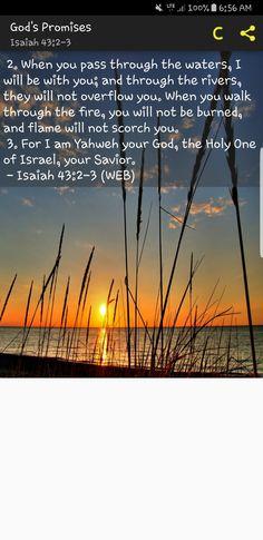 Biblical Quotes, Bible Verses Quotes, Bible Scriptures, Faith Quotes, Devotional Quotes, Bible Prayers, Quotable Quotes, Qoutes, Minions
