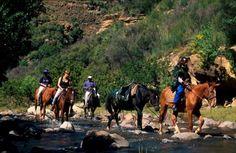 Horse Riding, Trekking, Pony, Horses, Adventure, Animals, Travel Report, Travel Advice, Viajes