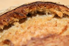 Handy sourdough tips - Happy & healthy culture: successful sourdough baking