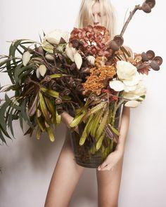 Grandiflora Australian Native Mixed arrangement
