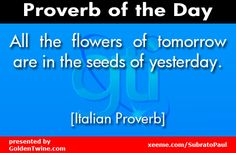 All the flowers of tomorrow are in the seeds of yesterday. Seeds Of Yesterday, Indian Proverbs, African Proverb, Creative Web Design, Italian Quotes, Popular Quotes, Quotes For Kids, Kid Quotes, Speak The Truth
