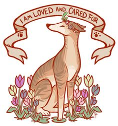 I am loved and cared for. I am an adopted racing greyhound. I have a family now. Greyhound Art, Italian Greyhound, Greyhound Tattoo, Cute Animal Quotes, Cute Animals, Cute Drawings, Animal Drawings, Grey Hound Dog, Girly