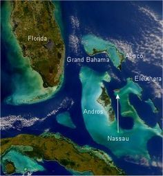 Education Around Earth - Andros Island, Bahamas Coral Reef Ecosystem is Living Laboratory for Students - Earthzine Bahamas Vacation, Bahamas Cruise, Nassau Bahamas, Caribbean Culture, Royal Caribbean, Holland Cruise, Coral Reef Ecosystem, Royal Cruise, Amazing Places On Earth