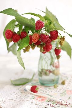 Maliny raspberry