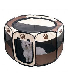 Take a look at this Pet Playpen by Etna Products on #zulily today!