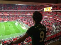 How beautiful are you Twitter / NiallOfficial: Super proud to be Irish ! Great ...