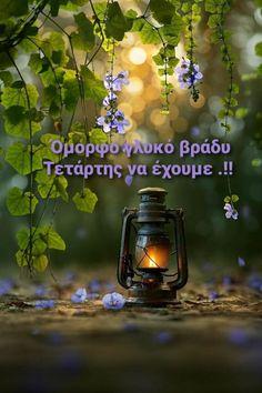 Happy Evening, Wonders Of The World, Good Night, Cool Photos, Nighty Night, Good Night Wishes