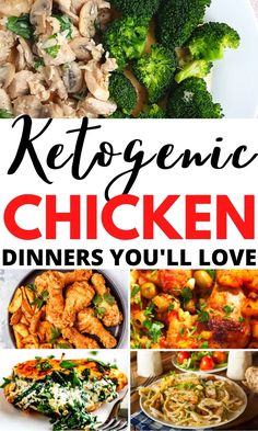 9 Keto Chicken Recipes that make easy keto dinner recipes for beginners. Whether you want keto chicken recipes crock pot ideas, recipes instant pot, one pan low carb chicken dinners and healthy chicken dinner recipes will be a hit!! Low Carb Chicken Thigh Recipe, Chicken Fajita Recipe, Low Carb Chicken Recipes, Chicken Breast Recipes Dinners, Healthy Chicken Dinner, Healthy Food, Healthy Recipes, Keto Dinner, Chicken Thighs