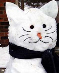 One Word:  Snowcat !!! Please snow this year so I can make this!!!!