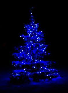 Blue Christmas #BBN